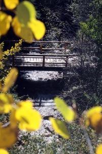 Bridge Over Arkansas During the Fall