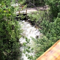 View of river from cabin deck (June 2020).